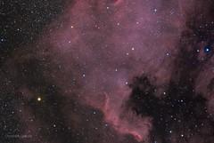 North America Nebula V2 (christoph.lankeit) Tags: space deep sky teleskop telescope 580mm apo quadruplet moravian ccd g28300 kamera camera phd skywatcher neq6 mount parallaktisch oag autoguiding pixinsight nebula
