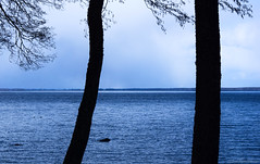 Dark sides of the lake II (Joni Mansikka) Tags: nature outdoor spring lake lakeside trees silhouettes dark water view clouds landscape pyhäjärvi yläne suomi suomi100 finland finland100 blues