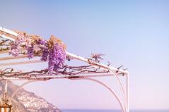 Purple days (Sabrina Romano) Tags: wisteria flower positano costiera amalfitana amalfi italy postcard violet purple colours blue sky sea nature plants panorama view nikond90 nikonphotography nikonitaly 35mm lens