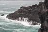 PA220685a (mrkevinw08) Tags: korea jeju daepojusangjeollicliff daepo jusangjeollicliff jusangjeolli cliff