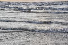 Waves and Reflections on Galveston East Beach JN106220 (JaniceNolan_braud) Tags: galveston galvestoneastbeach galvestonisland northamerica texas unitedstates beach city coastalcity earlymorninglight island landscape morning reflecting reflection reflections water waterelement waves weather wind