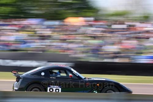 Matt Palmer in the Ginetta GT5 Challenge at Thruxton, May 2017