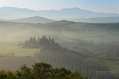 A9905315_s (AndiP66) Tags: villabelvedere villa belvedere sanquiricodorcia sanquirico dorcia zypressen cypresses zypressenstrasse cypressstreet nebel dunst fog mist sonne sun morgen morning april spring frühling 2017 valledorcia valle toscana tuscany italien italy sony alpha sonyalpha 99markii 99ii 99m2 a99ii ilca99m2 slta99ii tamron tamronspaf70200mmf28dildif tamron70200mm 70200mm f28 amount andreaspeters
