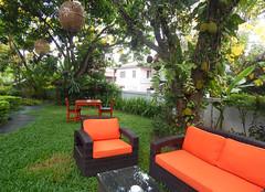 Jackfruit Season at Villa Maly (The Best Luang Prabang Hotel) Tags: jackfruit tropicalgardens villamaly hotelsinluangprabang hotelluangprabang luangprabanghotel garden laos