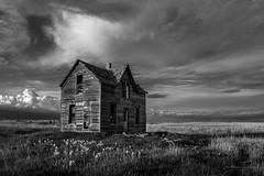 Abandoned Farmstead (Jonathan Tasler) Tags: farmstead kansas blackandwhite prairie field clouds farm