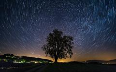 Calm Anchor (apodemetes) Tags: kirchdorf bern schweiz ch night startrails tree milkyway nature canon canoneos5dmkiv