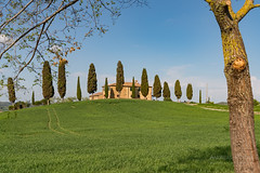 A9904831_s (AndiP66) Tags: agriturismoicipressini agriturismo icipressini pienza siena sanquiricodorcia valledorcia valle dorcia toscana tuscany italien italy sony alpha sonyalpha 99markii 99ii 99m2 a99ii ilca99m2 slta99ii sigma sigma24105mmf4dghsmart sigma24105mm 24105mm art amount andreaspeters