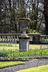 Worden Park (PangolinOne) Tags: canoneos6d england garden lancashire leyland outdoors park places sp70300mmf456 tamrona005sp70300mmf456divcusd tamronsp70300mmf456 tamronsp70300mmf456divcusd uk urn wordenpark unitedkingdom gb