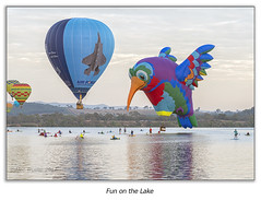 Fun on the Lake (Alec Trusler in Oz) Tags: canberra australia balloons colours water lake people hot air nikond800 24120mm alectrusler