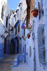 Chefchaouen alleys (Morocco) (Nicolay Abril) Tags: chauen xauen chefchauen tangiertetouan tétouan tangertetouan tangertetuan tetuán tetuanprovince marruecos marocco morocco maroc marokko maghreb magreb africa afrika afrique شفشاو الشاون تطوان المغرب أفريقيا العربي chefchaouen chaouen xaouen