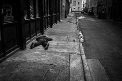 game over (chrisborrel) Tags: blackwhite bw blackandwhite neworleans street streetphoto streetphotographer streetphotography streetpics