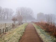 River Lea, Hertfordshire-1020872 (chrisyatesuk) Tags: hertford kingsmead riverlea autumn earlymorningsun hertfordshire landscape towpath
