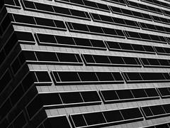 15377 Memorial Dr (Mabry Campbell) Tags: 15377memorialdr 2016 harriscounty houston mabrycampbell october skanskaab skanskadevelopment texas usa unitedstatesofamerica blackandwhite commercialphotography fineart fineartphotography floors glass image levels photo photograph photographer photography skanska windows f63 august 2013 august132013 20130813img0528 24mm 08sec 100 tse24mmf35l