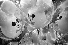 Dreams are Forever (Melissa_JMH) Tags: mono bw black white balloon mickey mouse mickeymouse disneyland california disney nikon nikond610 d610 fun outside outdoors amusement park theme reflection anaheim westcoast