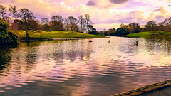 sefton park lake (Phil Longfoot Photography) Tags: park parkland lake reflection clouds trees seftonpark liverpool cityofliverpool liverpoolparks merseyside