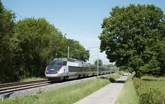 TGV Sud Est 16 (SylvainBouard) Tags: train railway sncf tgv tgvsudest