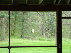 Boch Hollow State Nature Preserve (Dan Keck) Tags: hockingcounty hockinghills park woods shelter house basketball hoop backboard odnr naturalresources