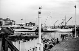 Tasmanien Hobart Hafen