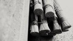 Broom Head.. (sunnyprince728) Tags: broom cleaning offices roads tracks streets footpaths largebroom