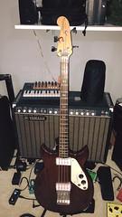 signature bass 2636