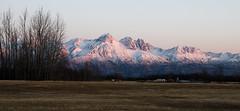 Palmer Pink v2 (fotostevia) Tags: alaska chugachmountains chugachrange governmentpeaknordictrailspalmer twinpeak alpenglow mountains