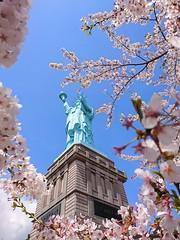 The Statue of Liberty (Oirase Town Aomori Japan) (akashirokiiro) Tags: statueofliberty aomori japan cherryblossoms