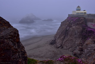 Fog Came in for a While|Cliff House, San Francisco