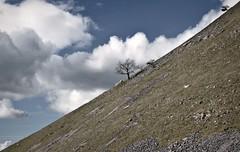 Keep it up (plot19) Tags: yorkshire dales landscape sky blue trees tree nikon north northern northwest now england english uk britain photography plot19