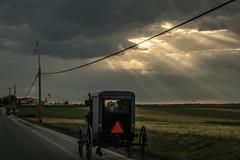 Kid (Resad Adrian) Tags: kid horse buggy landscape lancaster pennsylvania amish view amishland clouds road farm nikond5500 kitlens