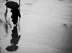 Brave the rain (desomnis) Tags: vienna wien austria österreich bw umbrella rain raining person street streetphotography reflection wet minimalistic blackandwhite 135mm canon canon6d canon135mm 6d desomnis