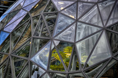 Life (zenseas) Tags: life amazon biosphere biodome seattle downtown hdr urban geodesicdome fern plant cool construction city lenora amazoncom modern cbd citylife lines glass glasswindow cityscape urbanscape