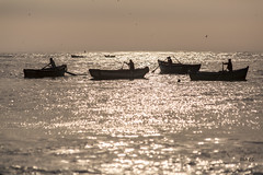 Chancay - At the End of the Day (_aires_) Tags: aires iris seaside boats woodenrowboats fishermen gulls silhouttes seascape canoneos5dmarkiii canonef70300mmf456isusm chancay chancayperu