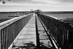walk the line (dorameulman) Tags: southcarolina southern monochrome blackandwhite bw dorameulman shadows landscape haiku poem canon canon7dmark11 outdoor hilltonheadisland bluffton
