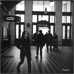 U-Bahnstation Volksoper_Rolleiflex 3.5 B (ksadjina) Tags: 12min 150 austria carlzeisstessar35 kodak400tmaxpushedtoasa800 nikonsupercoolscan9000ed rodinal rolleiflex35b vienna wien analog blackwhite film scan