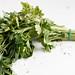 Organic fresh bunch of parsley