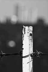 Downtown in the Distance (brev99) Tags: tamron70300vc d610 blackandwhite post barbedwire landscape tulsa bokeh blur blurredbackground ononesoftware on1photoraw2017 downtown