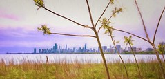 View From Montrose Point (Wes Iversen) Tags: chicago illinois lakemichigan montrosepoint nikkor18300mm texturaltuesday cityscape grasses lakes painterly people shrubs skylines texture trees water