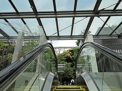 Escalator (tsu55) Tags: escalator