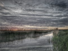 Just before sunrise (Jaco Verheul) Tags: sunrise dawn water fog reed outdoor serene cloud clouds phonephoto jaco verheul samsung reflection hdr