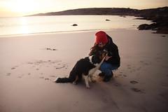 Meet a dog in Dog's Bay: Check! (Marta Marcato) Tags: dog dogsbay sunset walk walking playing red beach sun light sand puppy cane ireland irlanda tramonto passeggiare passeggiata giocare rosso spiaggia sole luce sabbia cucciolo nikond7200