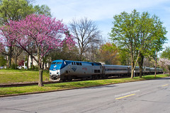 Big Game Train (tim_1522) Tags: mo missouri railroad railfanning rail unionpacific up jeffersoncity sub subdivision trees bloom spring pink p42dc generalelectric passenger
