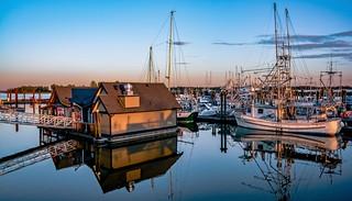 I 💖 Steveston Harbour