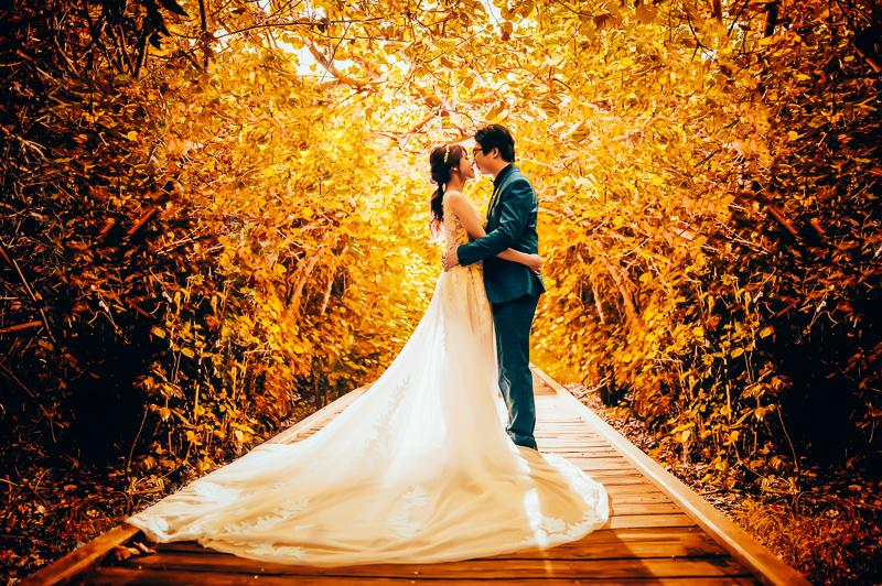 34646361186 e748fcf1cd o [台南自助婚紗] K&Y/森林系唯美婚紗