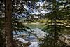 E. C. Manning Provincial Park 2017