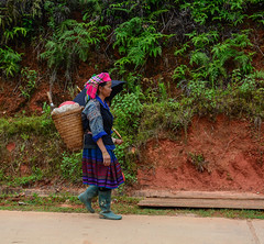 Hmong people walking on the mountain road (phuong.sg@gmail.com) Tags: agriculture asian basket china clothes colorful country culture curve down ethnic green hill hilltribe hmong indochina landscape minority mountain nature outdoor pannier path people poverty rainy road rural sapa skep stairs stone street tourism traditional travel tribe unidentified valley vietnam vietnamese village walk women