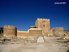 Almería 23 Alcazaba (ferlomu) Tags: alcazaba almeria andalucia castillo ferlomu
