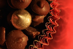 Eyes on the prize (alideniese) Tags: macromondays chips macromondayschips macro closeup chocolate chocolatechips gold goldchocolatechip brown darkchocolate cupcakemould sunlight shiny red colour colourful