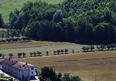 P_MG_4665 (Foto Massimo Lazzari) Tags: paesaggi agreste