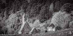 Glendalough Monastery (M Carmody Photography) Tags: imagesbymarkcarmody markcarmodyphotography markcarmody canon carmo carmopolice carmopolis carmody glendalough ireland mark wicklow markcarmodyphotographycom mc7d8815 kevin saintkevin monastery round tower roundtower viking church religion religious blackandwhite trees forest woodland valley