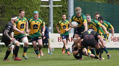 BW0Y2806 (Steve Karpa Photography) Tags: henleyhawks henley rugby rugbyunion game sport competition outdoorsport redruth
